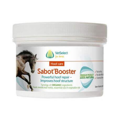 Sabot Booster