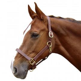 Licol Cheval en Cuir Deluxe Harry's Horse