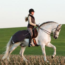 Couvre Rein Imperméable Amigo Competition Horseware