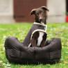 Panier pour Chien Rambo Dog Bed Horseware Marron