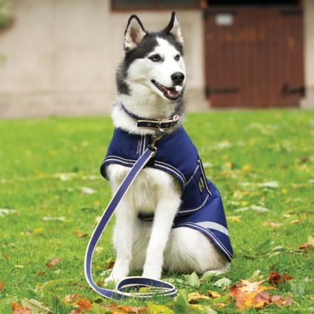 Laisse pour Chien Horseware Amigo Dog Lead