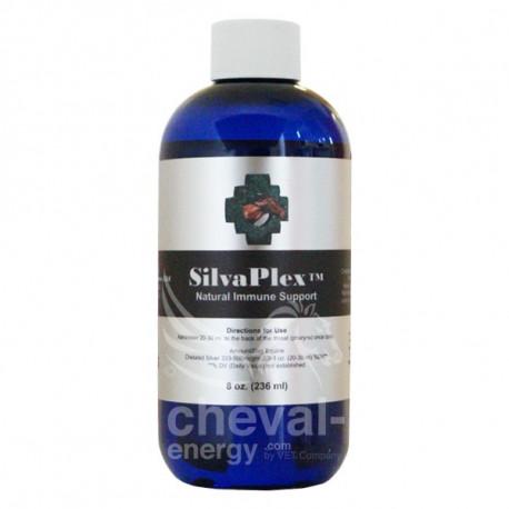 SilvaPlex nébulisation cheval