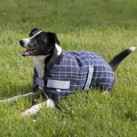 Manteau Chien Colorado Equi-Theme