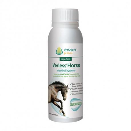 Verless Horse