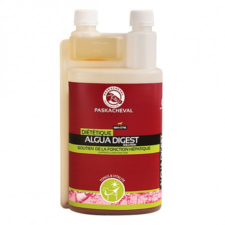 Algua Digest