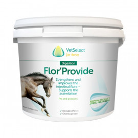 Flor Provide Loen Vet