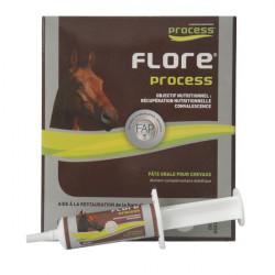 Flore Process