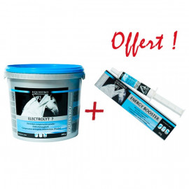 OFFRE SPECIALE ELECTROLYT 7 : 1 ENERGY BOOSTER OFFERT
