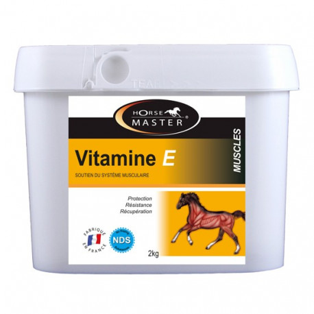 Vitamine E Cheval - muscles cheval