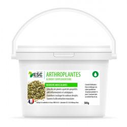 Arthroplantes