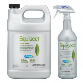 Equisect