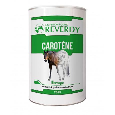 Carotene Reverdy 2,5kg