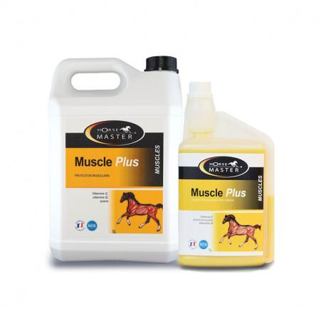 Muscle Plus de Horse Master