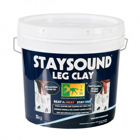 Staysound tendons cheval