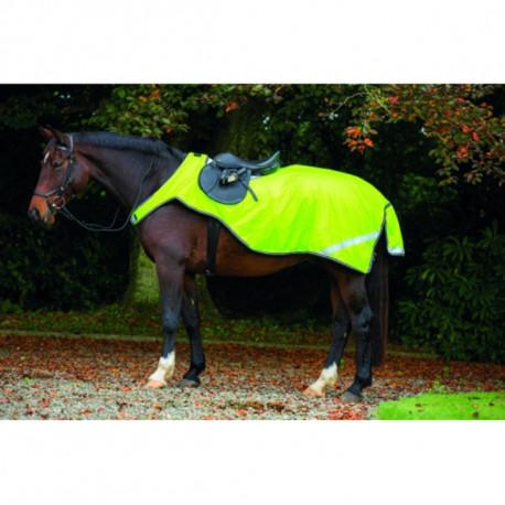 Couvre Rein Amigo Fluorescent Horseware