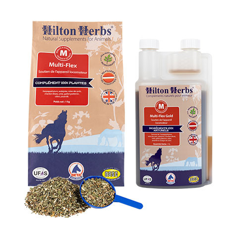 Hilton Herbs Multiflex / Multiflex Gold