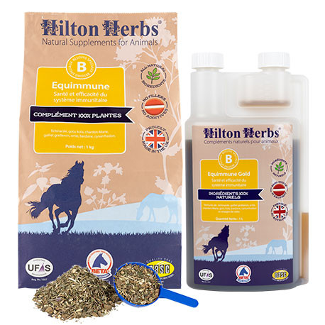 Hilton Herbs Equimmune / Equimmune Gold
