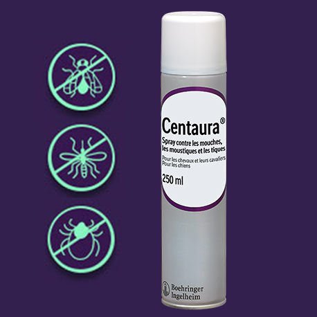Anti-mouches cheval : Spray, masque, chemise, comment choisir