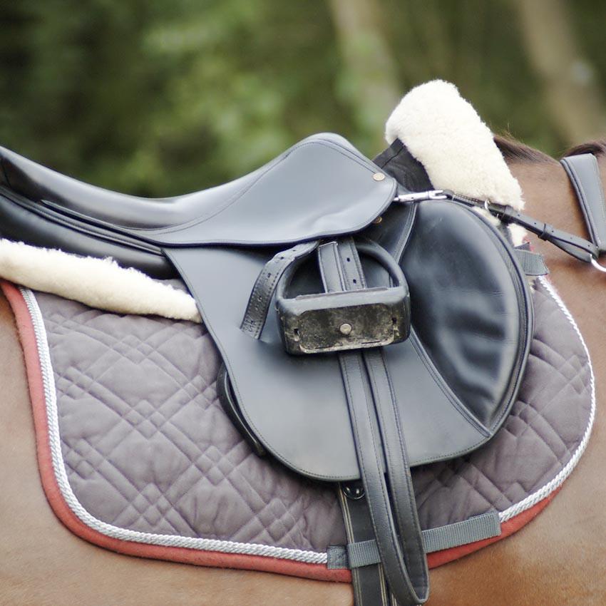 Dorsalgies chez le cheval : Comment les éviter