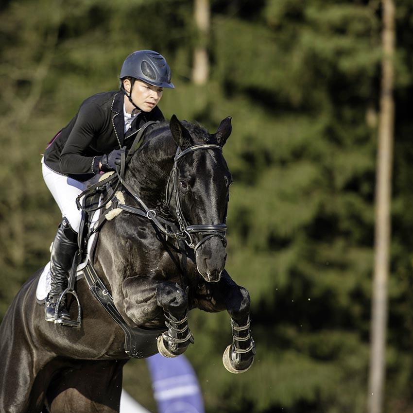 Performance du cheval : En forme toute la saison