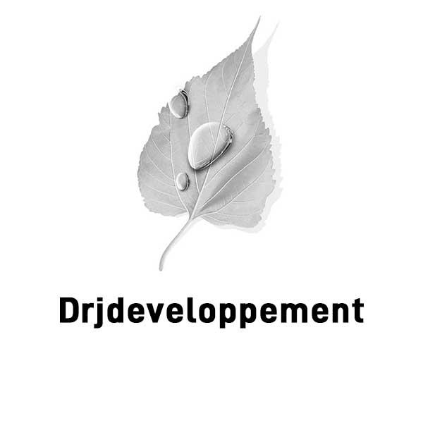 DRJ developpement