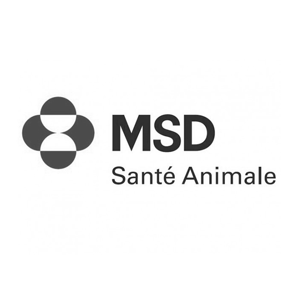 Laboratoire MSD