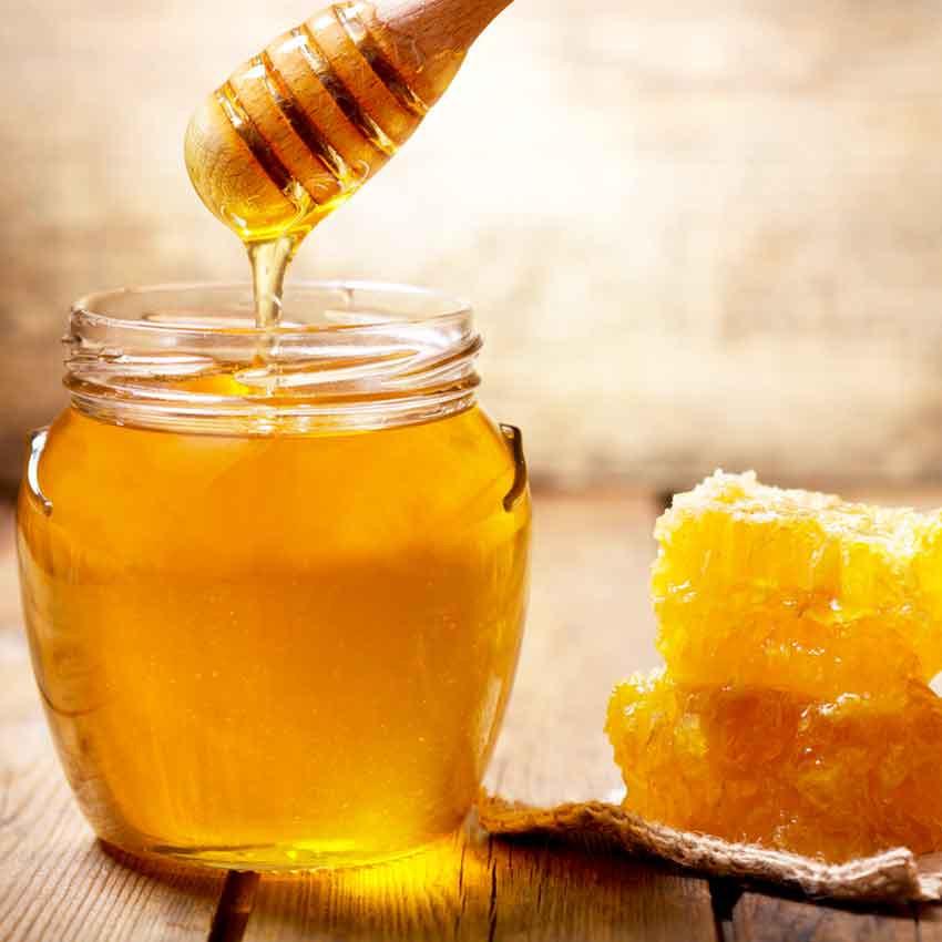 Miel cheval : tous les bienfaits du miel pour votre cheval